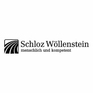 schloz-woellenstein-viasona